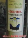 Tsuga2