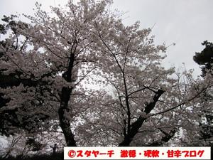 2016040304