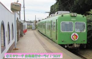 2018120302_green